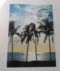 Postcards 15