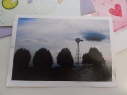 Wordless Wednesday: Windmills in Mississipi, a postcard from Laili!